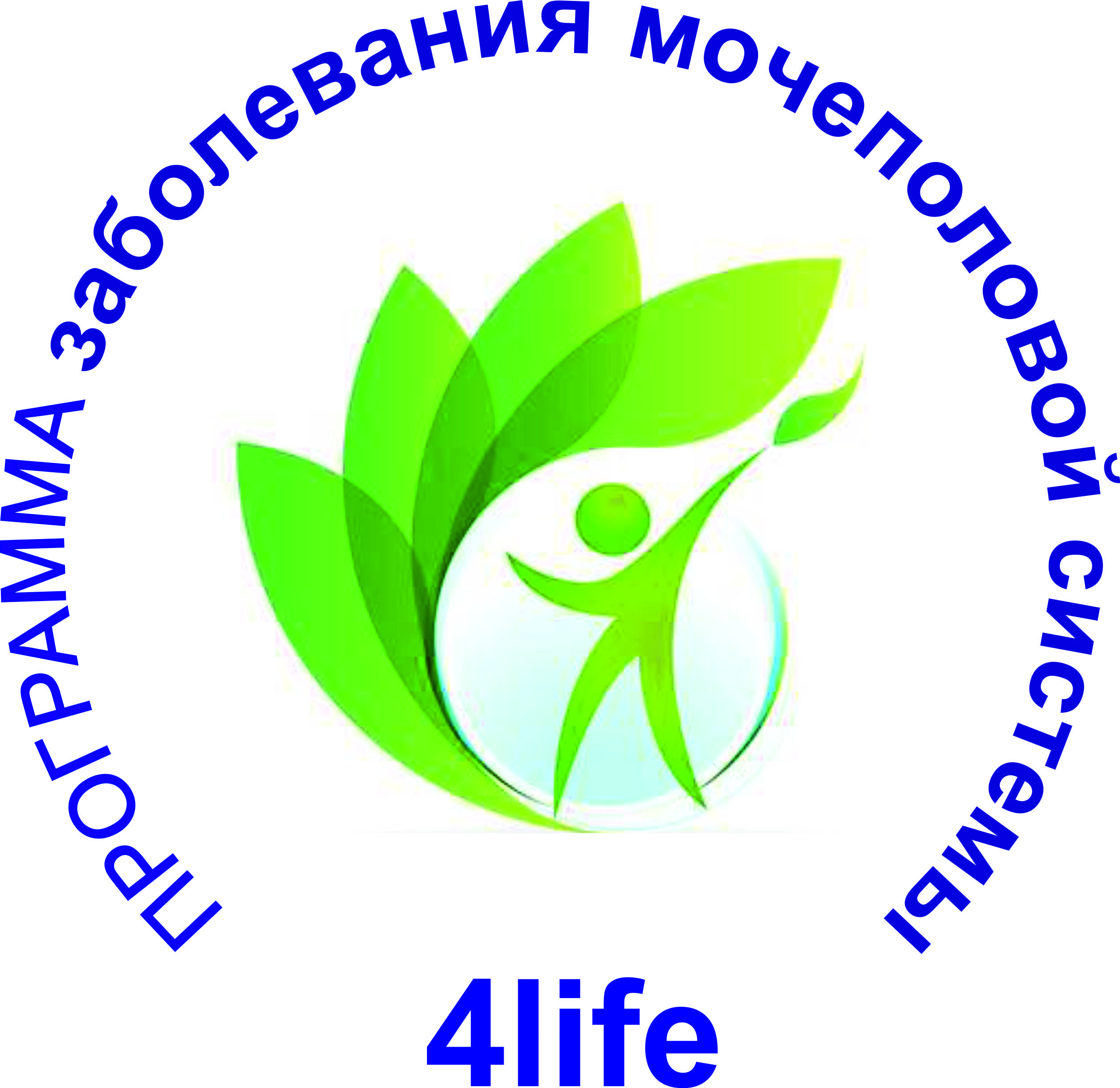 Программа «Мочеполовая система»